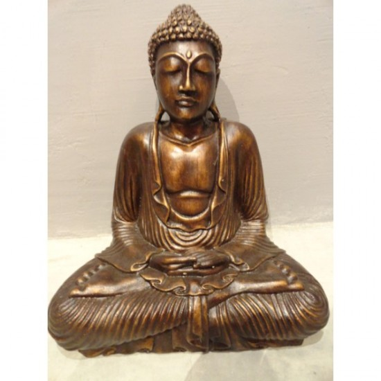 Statue Of  Buddha Ji In Meditation