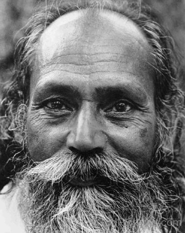 Baba Hari Dass Image