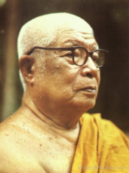 Great Teacher Buddhadasa