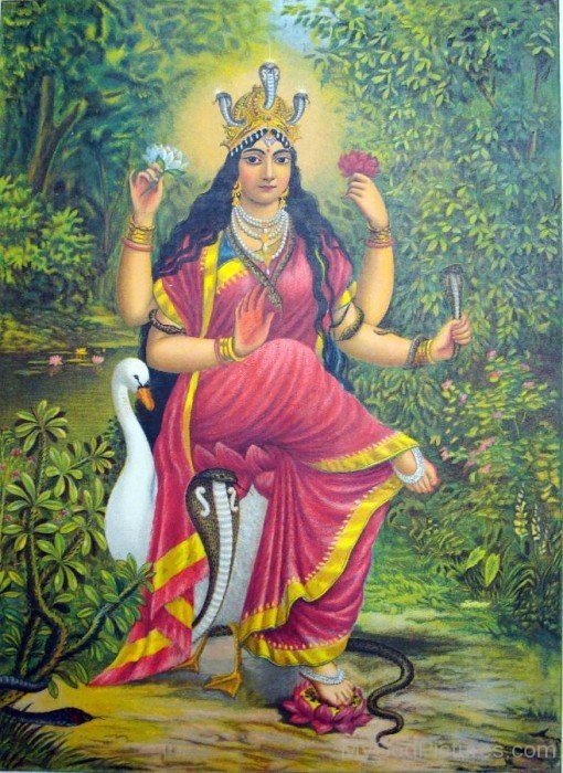 Picture Of Goddess Manasa