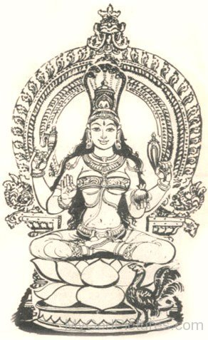 Sketch Of Goddess Manasa