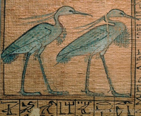 Egyptian Deity Bennu-gv309
