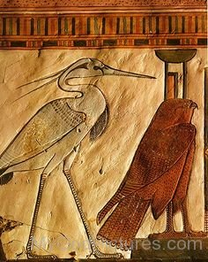 Egyptian Mythology Bennu-gv310