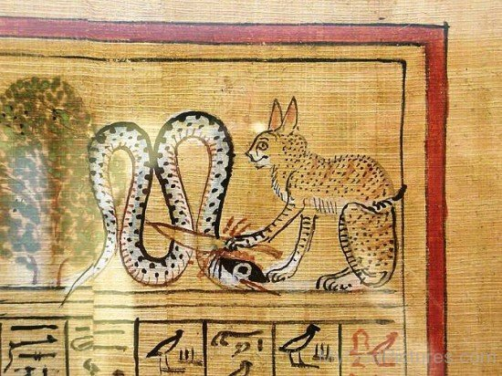 Portrait Of Apep And Ra As Cat-nb514