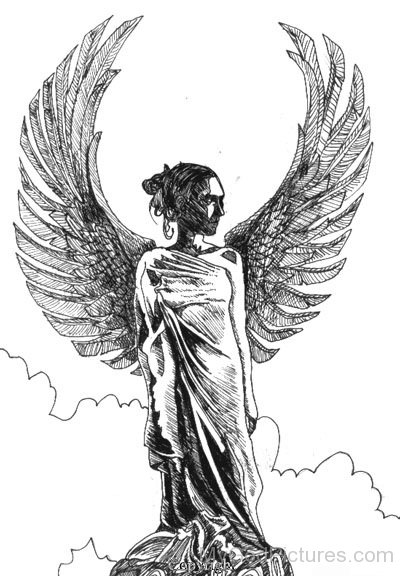 Victoria Sketch