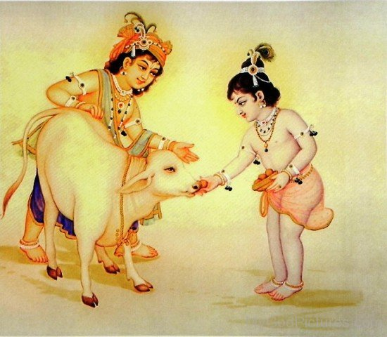Balarama And Krishna Feeding Cow-fb501