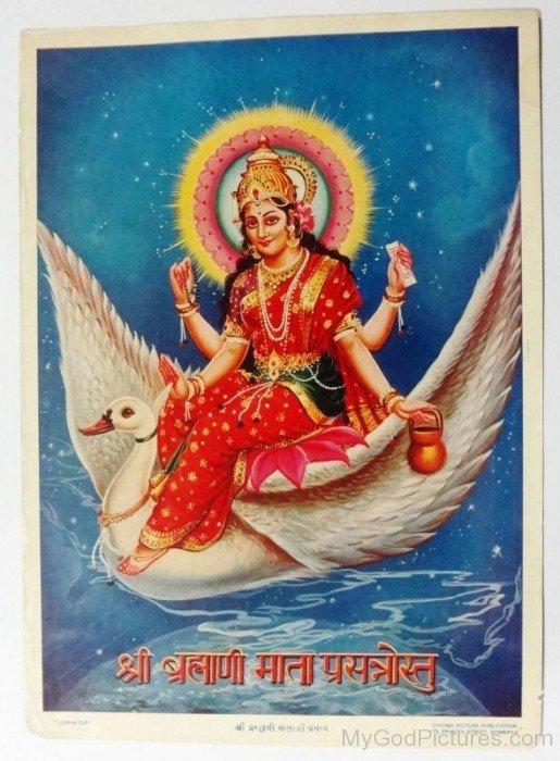 Brahmani Picture-hj63