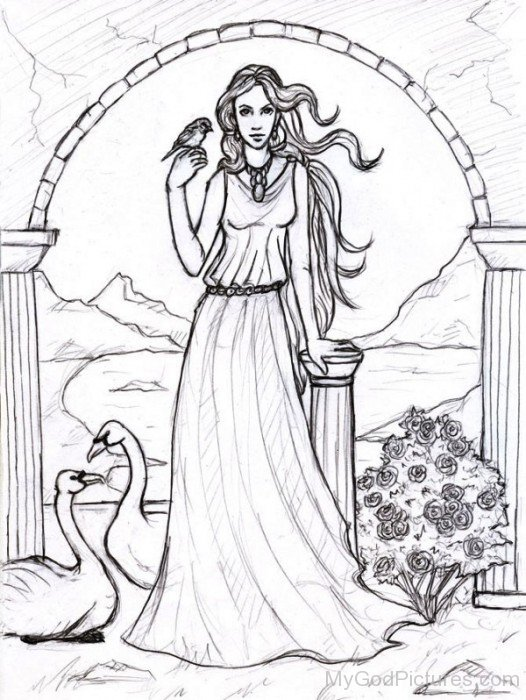 Drawing Of Aphrodite - God Pictures