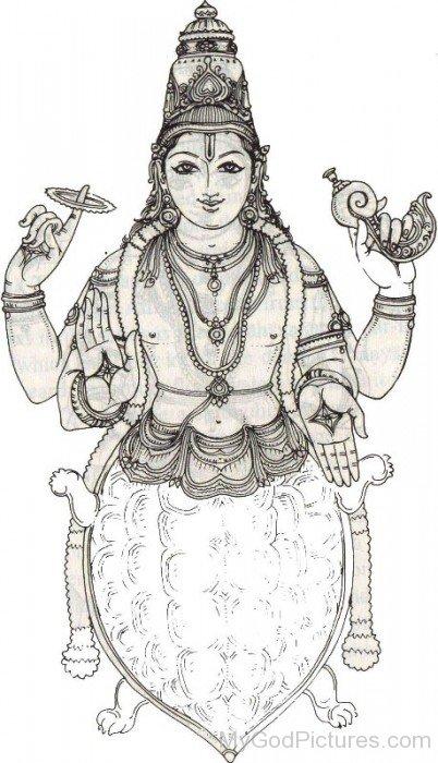 Drawing Of Kurma-po802