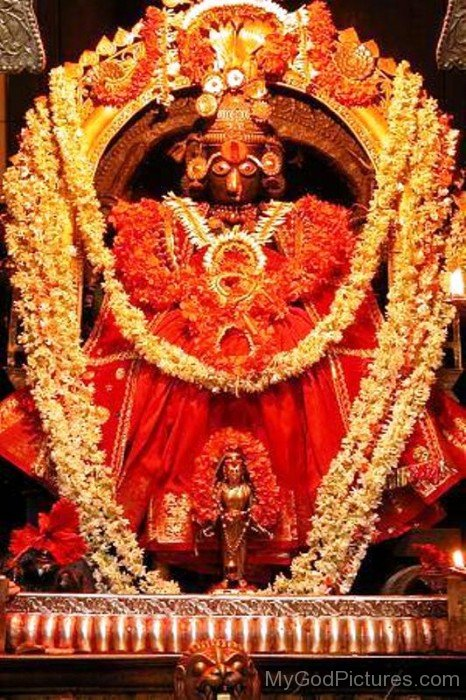 Image Of Goddess Shantadurga-wq13