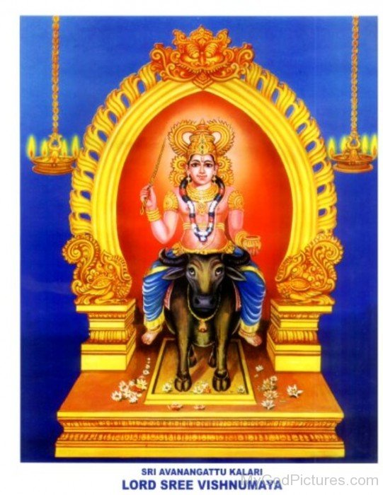 Lord Sree Vishnumaya-fb64
