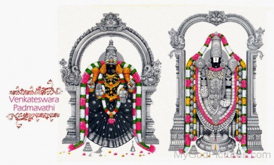 Venkateswara And Padmavathi